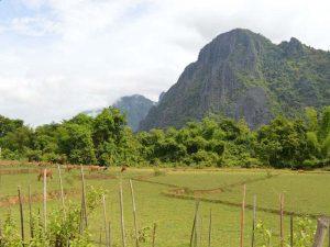 Grüne Landschaft bei Vang Vieng