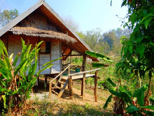 Bambusbungalow im Elephant Conservation Center