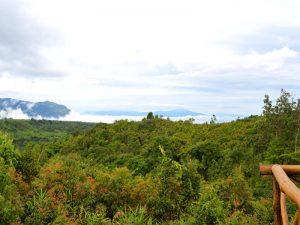 Aussicht auf das Bolaven Plateau