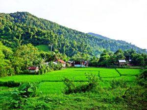 Landschaft bei Luang Namtha
