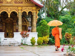 Mönch im Tempel in Luang Prabang