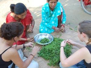Essenszubereitung bei den Tharu