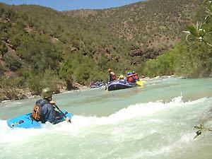 Paddelnd auf dem wilden Trisuli Fluss