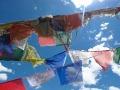 Van de Taj naar de Tibetaan