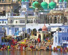 Kamelen en kastelen in Rajasthan
