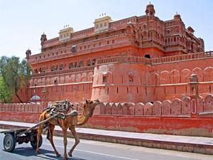 india rajasthan rondreis