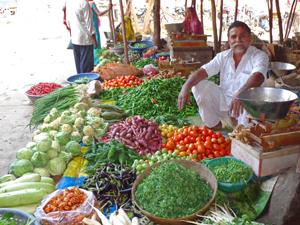 india markt verkoop india