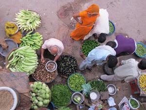 India Jaipur markt