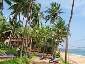 Kovalam strand palmen