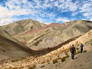 himalaya reis nubra vallei