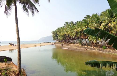 strand natuurhuisje