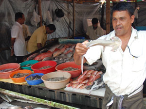 visverkoper india
