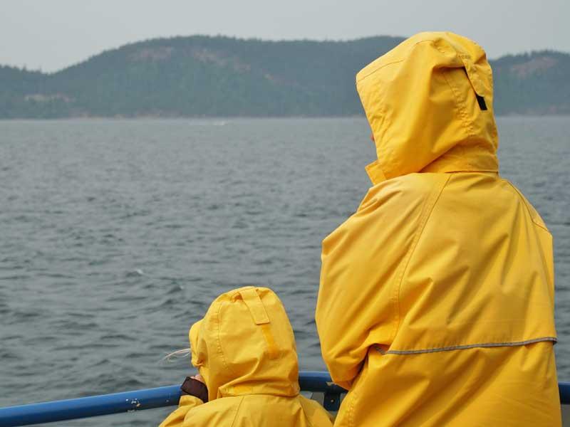 walvissen-vancouver-