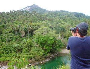 Baracoa-jungle