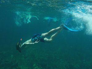 Cayo Levisa - snorkelen