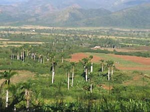 Uitzicht onderweg - rondreis Cuba