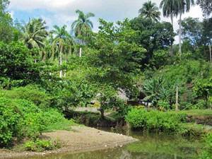 Rondreis-Cuba-baracoa