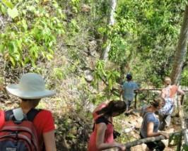 Trinidad-waterval-wandel