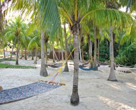 comfort-resort-varadero-tuin