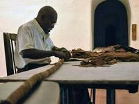 Cuba recordhouder sigaar