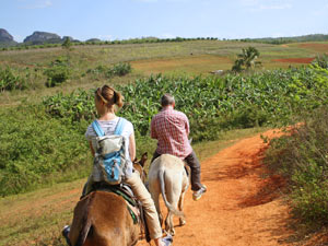 Paardrijden Cuba rondreis