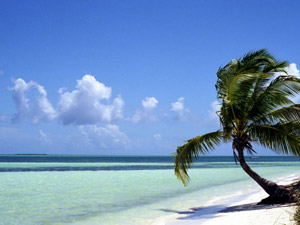 Cuba vakantie: azuurblauwe zee