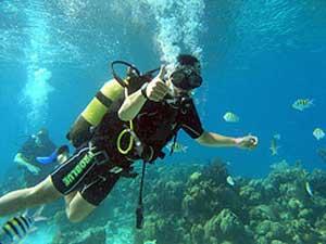 Duiken tussen koraal en visjes