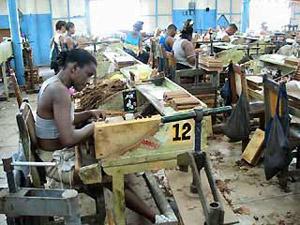 Cuba sigaren fabriek