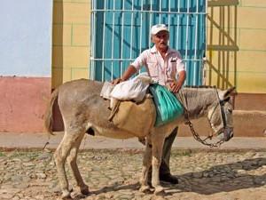 Trinidad ezel - Cuba reizen