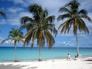 Relaxen aan palmenstrand Cuba