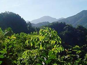 Tropische omgeving Sierra Maestra