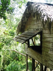 Hut in de Sierra Maestra