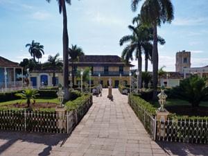 Trinidad-plein-palm