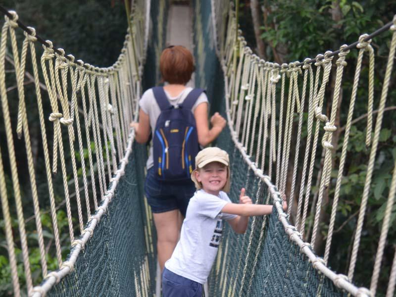 rondreis Maleisië met kinderen - Canopy Walkway