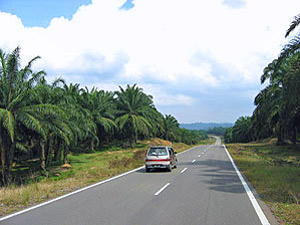 auto vakantie maleisie familie