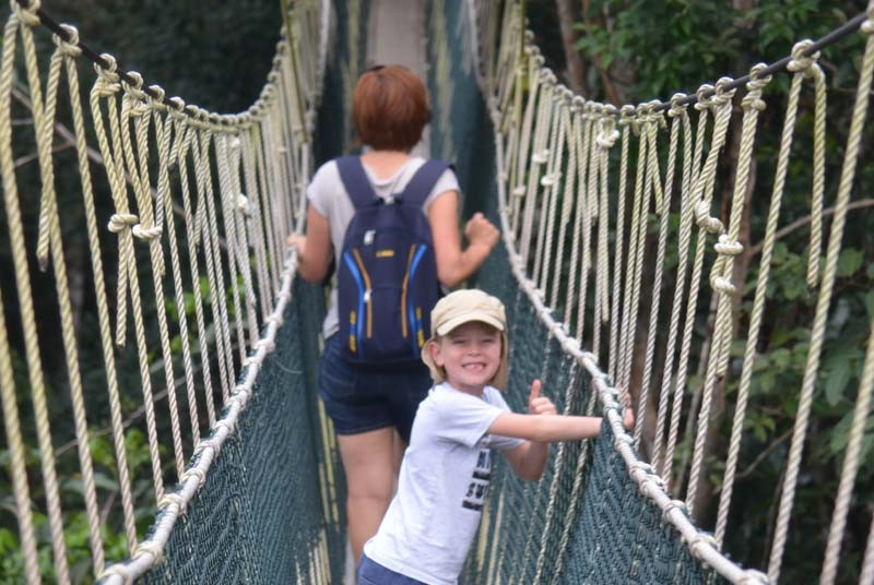 Vakantie Maleisie - Canopy walkway