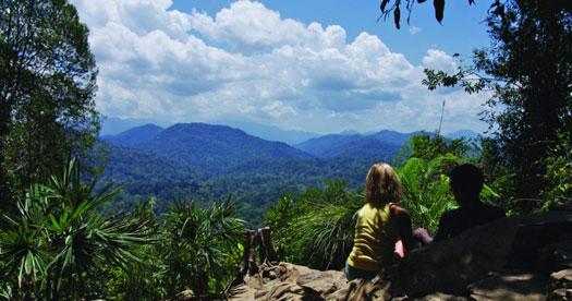 Maleisie rondreizen - Taman Negara NP