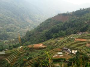 Ha Giang rijstvelden