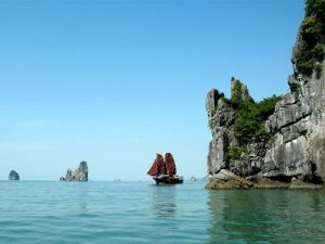 bai-tulong-jonk-vietnam