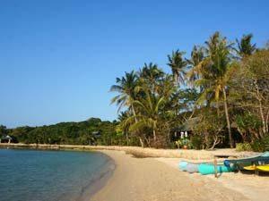 Palmeneiland strand