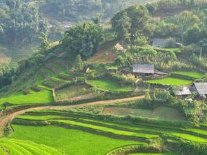 Sapa valleien Vietnam