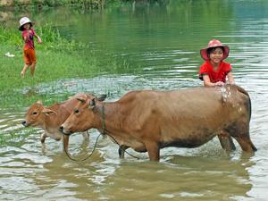 Vietnam-reis met kinderen