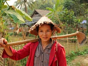 Mai Chau vallei - Wandelen door rijstvelden