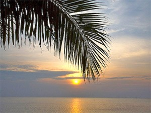 vietnam zonsondergang palmeneiland