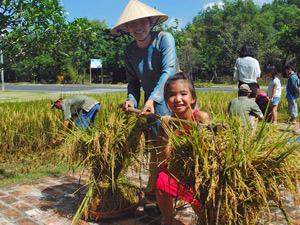 Ho Tram Zuid-Vietnam - Rijstveld