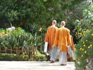 Bloemen, bossen en boeddha's