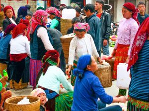 vietnam-meo-vac-markt