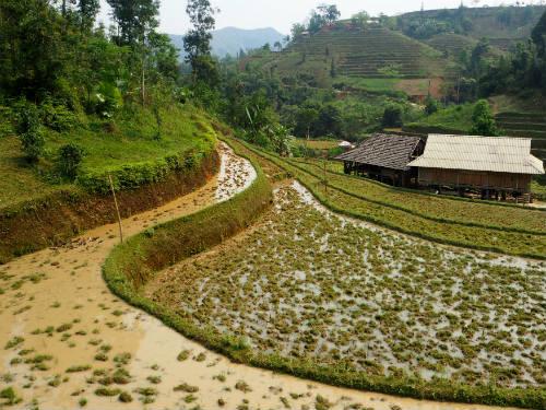 Huang Su Phi rijstvelden