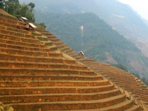 Mu Cang Chai Trekking