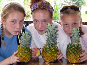 Costa Rica met kinderen - ananas